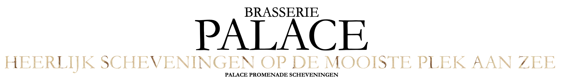 Banner Brasserie Palace WINTER afwijkend